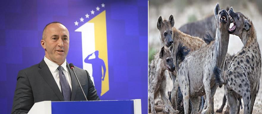 Përpjekje të shëmtuara të partive të Prontomafisë për të banalizuar dorëheqjen e Haradinajt
